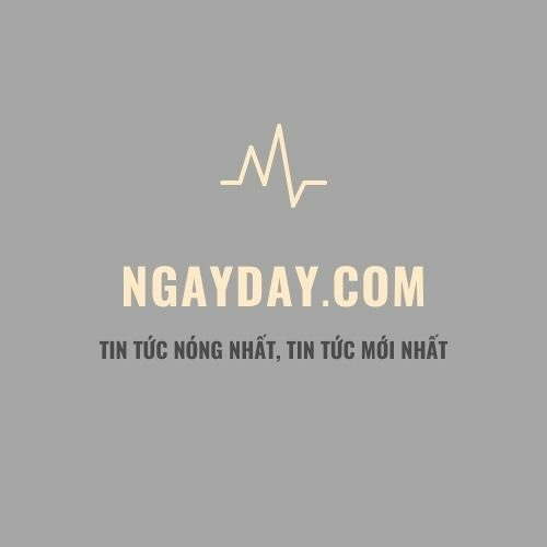 báo ngay day - noi that henry le design